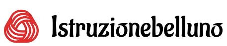 istruzionebelluno.net